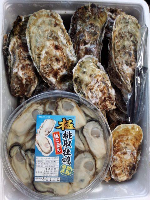 oyster-02-set